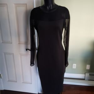 The Limited Sexy/Curvy Black Dress w/Sheer Sleeves